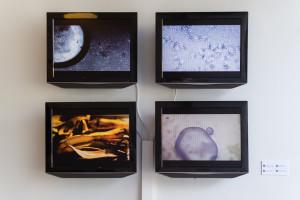 Videos of protocells moving around
